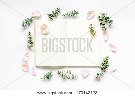 woman table with flower petals and herbs top view on white background mock up
