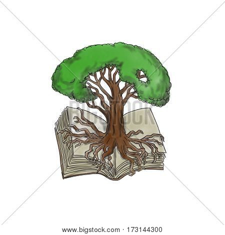 Tattoo style illustration of a tree rooted on book set on isolated white background.