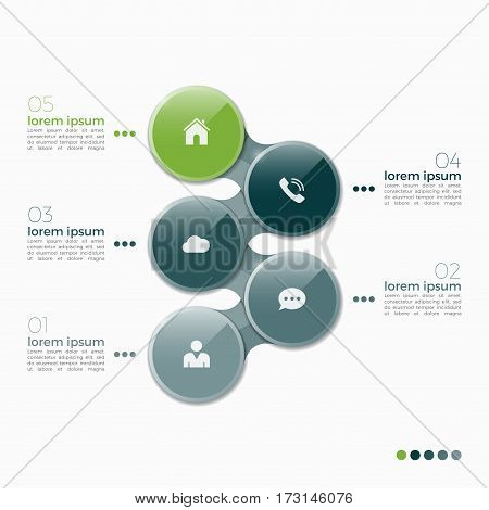 Vector 5 Option Infographic Design With Ellipses