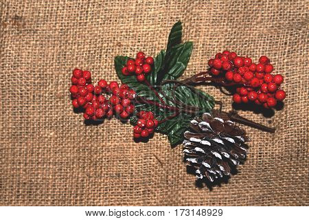 branch of red mountain ash and snow-covered pine cone on a background of burlap