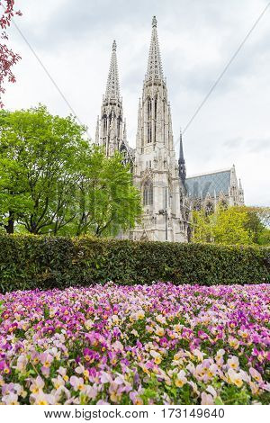 The Votive Church and purple spring flowers in Vienna