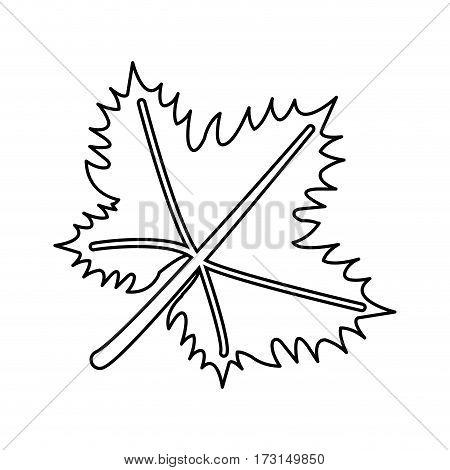 leave grape wine symbol thin line vector illustration eps 10