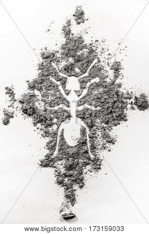 The ant termite drawing silhouette made in dust dirt ash as pest control exterminator insect invasive insecticide colony problem concept background