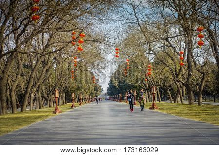 BEIJING, CHINA - 29 JANUARY, 2017: Walking around temple of heaven compund garden, an imperial complex with various religious buildings located in southeastern central city area, nice blue sky.