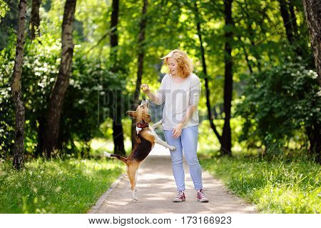 Young Woman With Beagle Dog In The Summer Park