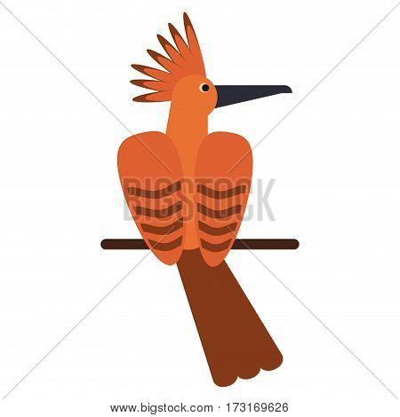 hoopoe bird exotic icon vector illustration eps 10