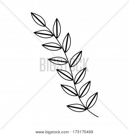 monochrome silhouette with oval leaves with ramifications vector illustration