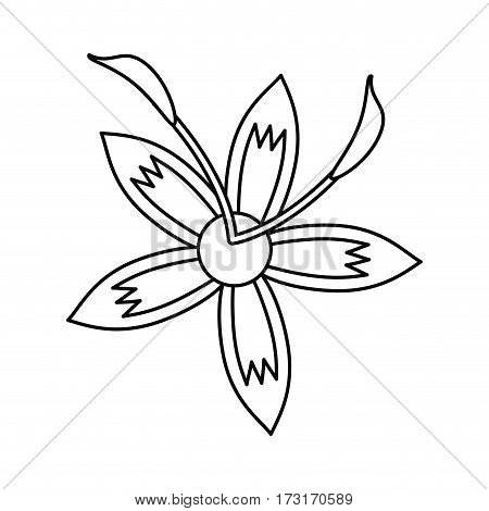 flower daylily beautiful flora thin line vector illustration eps 10