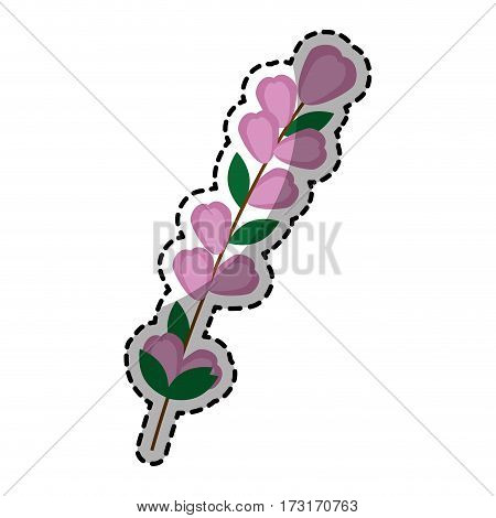 sticker of color silhouette flowers with oval leaves and ramifications vector illustration