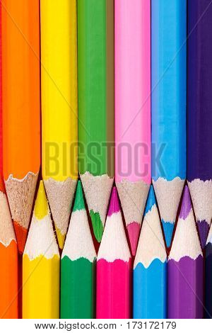 Group of Color pencils is vertical close up. Without tips. School and education. Art. Drawing and painting.