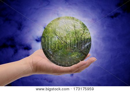 Future of the earth and green forest like glass sphere in one hand.
