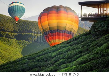 Balloon and Viewpoint on the top of cameron highland tea valley and sunrise in Malaysia