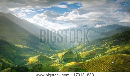Terraced rice field inside fog and morning ray in Mu Cang Chai Vietnam