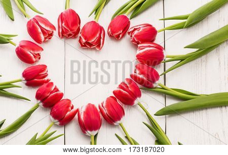 Red tulips in heart shape on white wooden background. Mother's Day