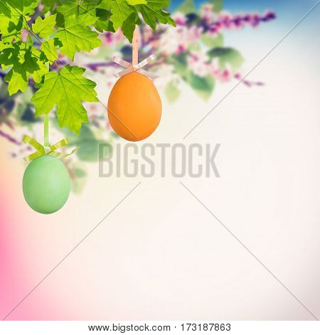 Easter Eggs On Branches
