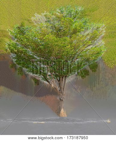 Tree on the black background graphics, Arts concept