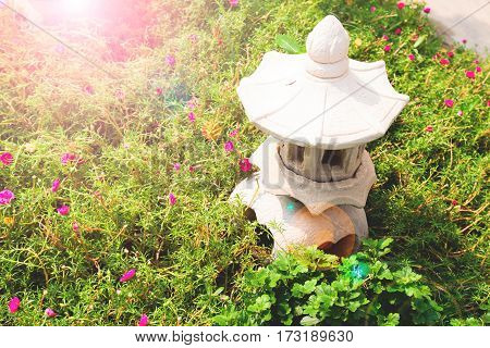 Japanese style garden with little pink flower
