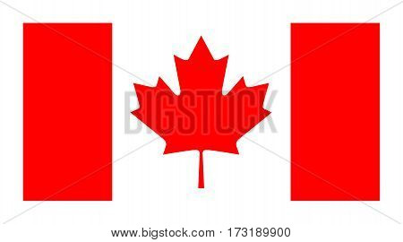 Vector official flag of Canada  isolated on white