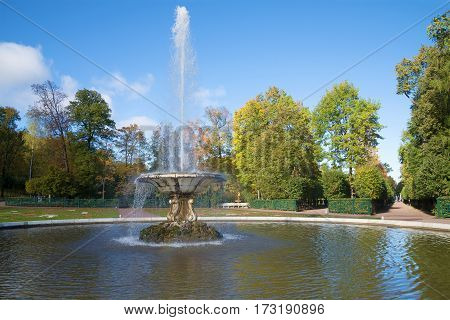 ST. PETERSBURG, RUSSIA - OCTOBER 05, 2015: October day at the Bowl fountain in the Lower park of Peterhof