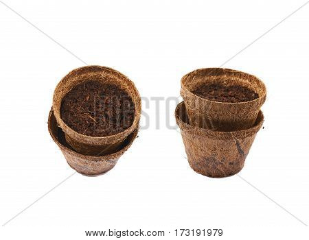 Degradable coconut pot filled with the earth soil, composition isolated over the white background, set of two different foreshortenings
