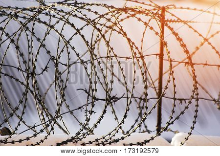 Barbed wire fence prison concept of salvation Refugee Silent lonely freedom
