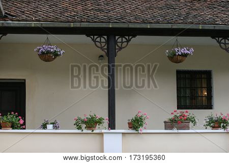 Porch With Flowers In Bran