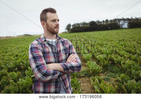 Farmer standing with arms crossed in the field on a sunny day
