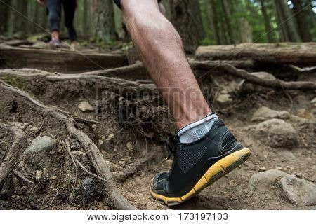 Low section of hiker hiking in countryside forest