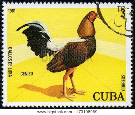 UKRAINE - CIRCA 2017: A stamp printed in Cuba shows a Ctnizo the series Fighting cocks circa 1981