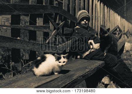 purebred kitten in a remote village. monochrome.