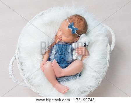 Little baby girl in jeans costume napping in her child's basket with bear toy, topview