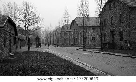 One of streets in Auschwitz concentration camp