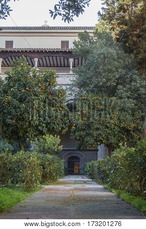 A yard of the Primate Cathedral of Saint Mary of Toledo with a garden of orange trees gates and a footpath Castilla-La Mancha Spain.