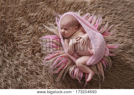 cute sleeper newborn baby girl in a pink wrap on brown and pink wool