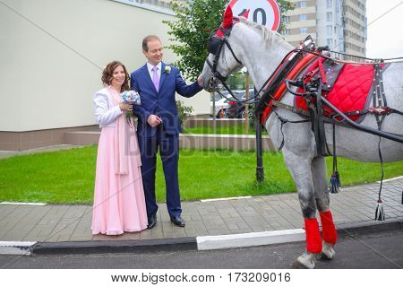 Smiling man and woman touch horse in harness near residential buildings