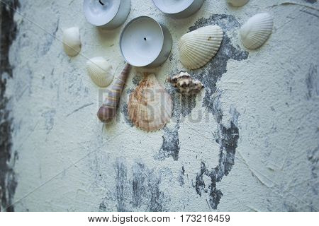Spa concept: seashells and candles on the rough plaster background