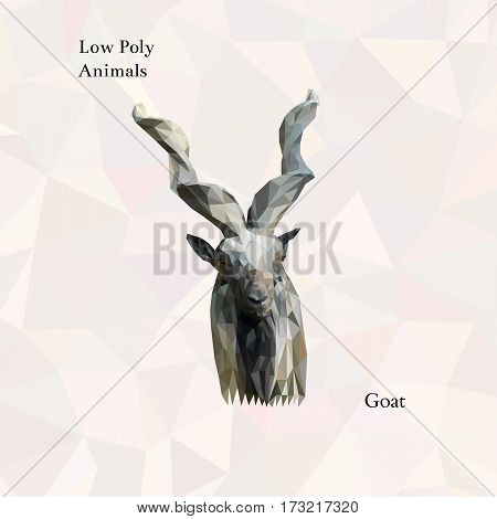 Head of horned goat portrait from low poly. Vector polygonal illustration. Collection of triangle animals
