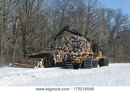 A logging skidder unloading logs on a winter day