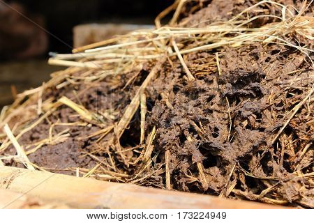 close up image of farmyard manure background