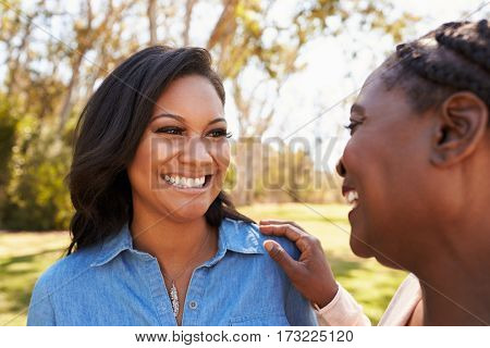 Mother And Adult Daughter Talking In Park Together