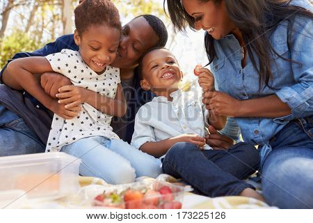 Family Enjoying Summer Picnic In Park Together