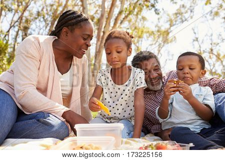 Grandparents And Grandchildren Enjoy Picnic In Park Together