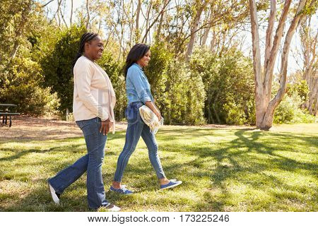 Mother And Adult Daughter Going For Picnic In Park Together