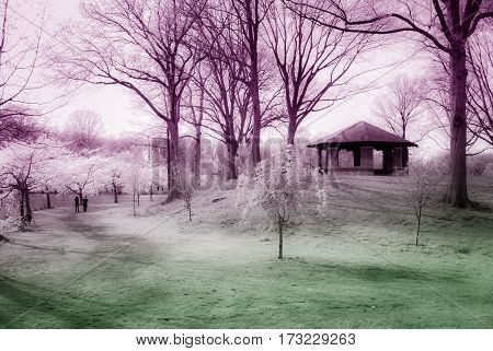 A black and white color toned view of Branchbrook Park in Spring with the cherry blossom trees blooming.