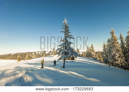 A male mountaineers walking on a glacier. Mountaineers on a snowy mountain in a sunny winter day.