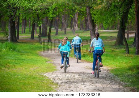 Parents With Daughter Riding Bikes In Park or summer forest. View from back selective focus.