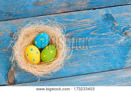 Easter eggs and pussy willow on blue wooden background