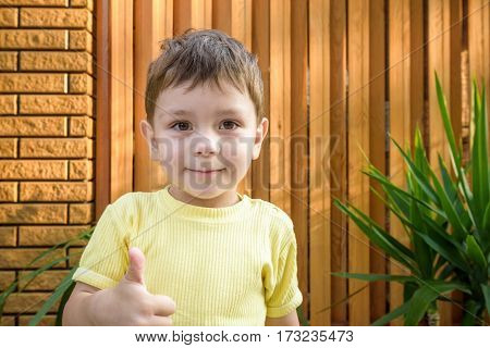 Portrait of beautiful little boy giving you thumbs up over wooden and brick background