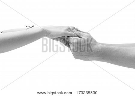 black and white closeup shot of hands of a male and a female held together isolated on white background.