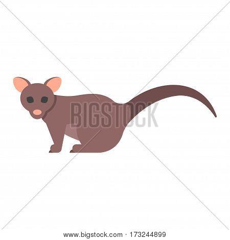 Vector flat style illustration of brushtail possum. Icon for web. Isolated on white background.
